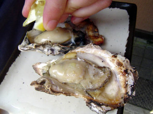 44_oyster